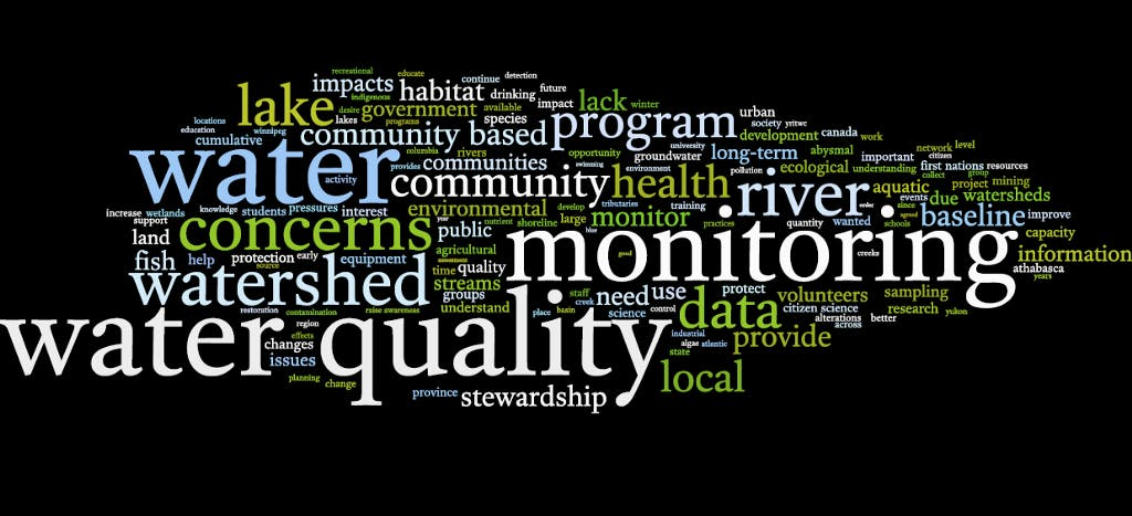 word map of words associated to community based monitoring