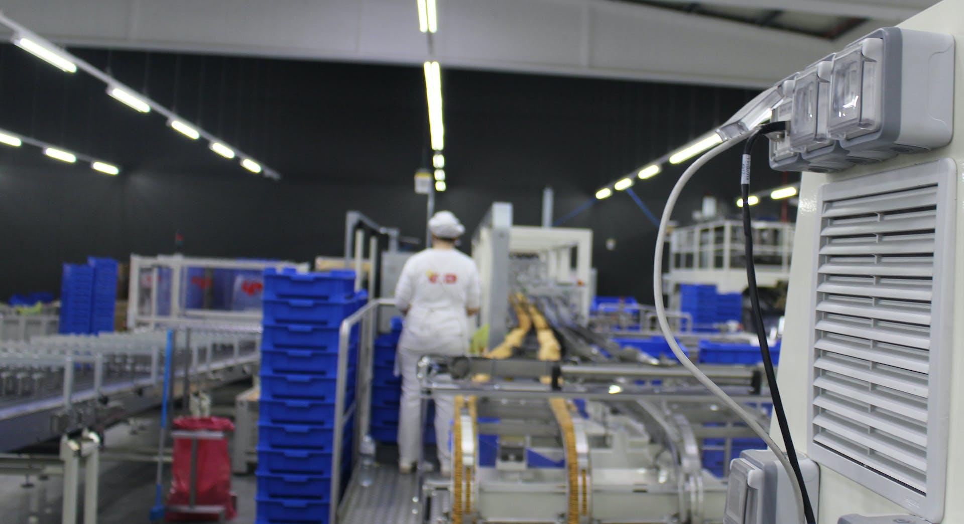 linha de produção da empresa Vieira de Castro