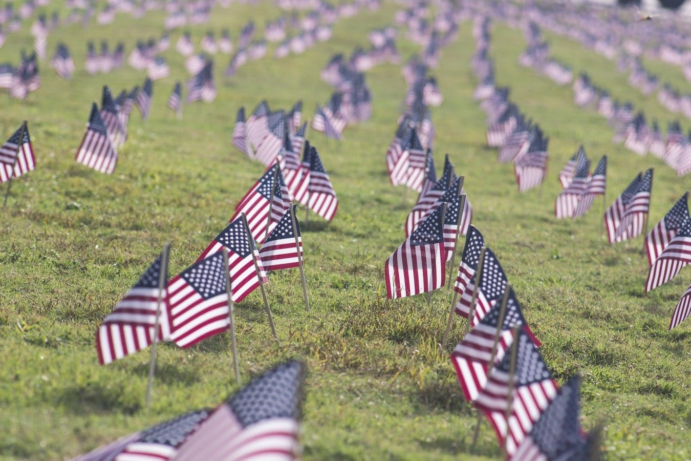 Flags for Vets