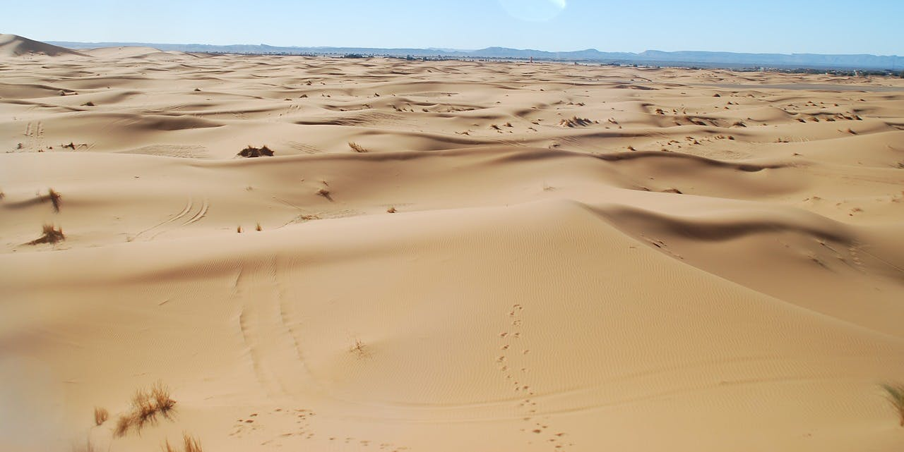 Photo Excursion organisée à Merzouga - Maroc