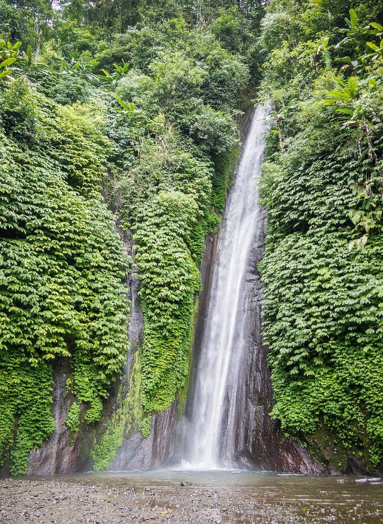 Photo Munduk - Indonésie
