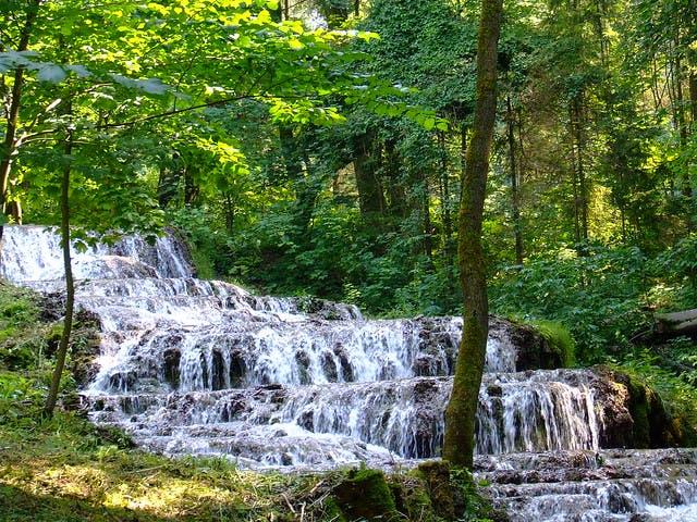 Photo Parc National de Bukk - Hongrie