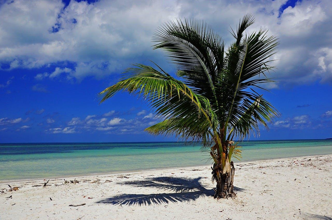 Photo L'archipel de los Canarreos - Cuba