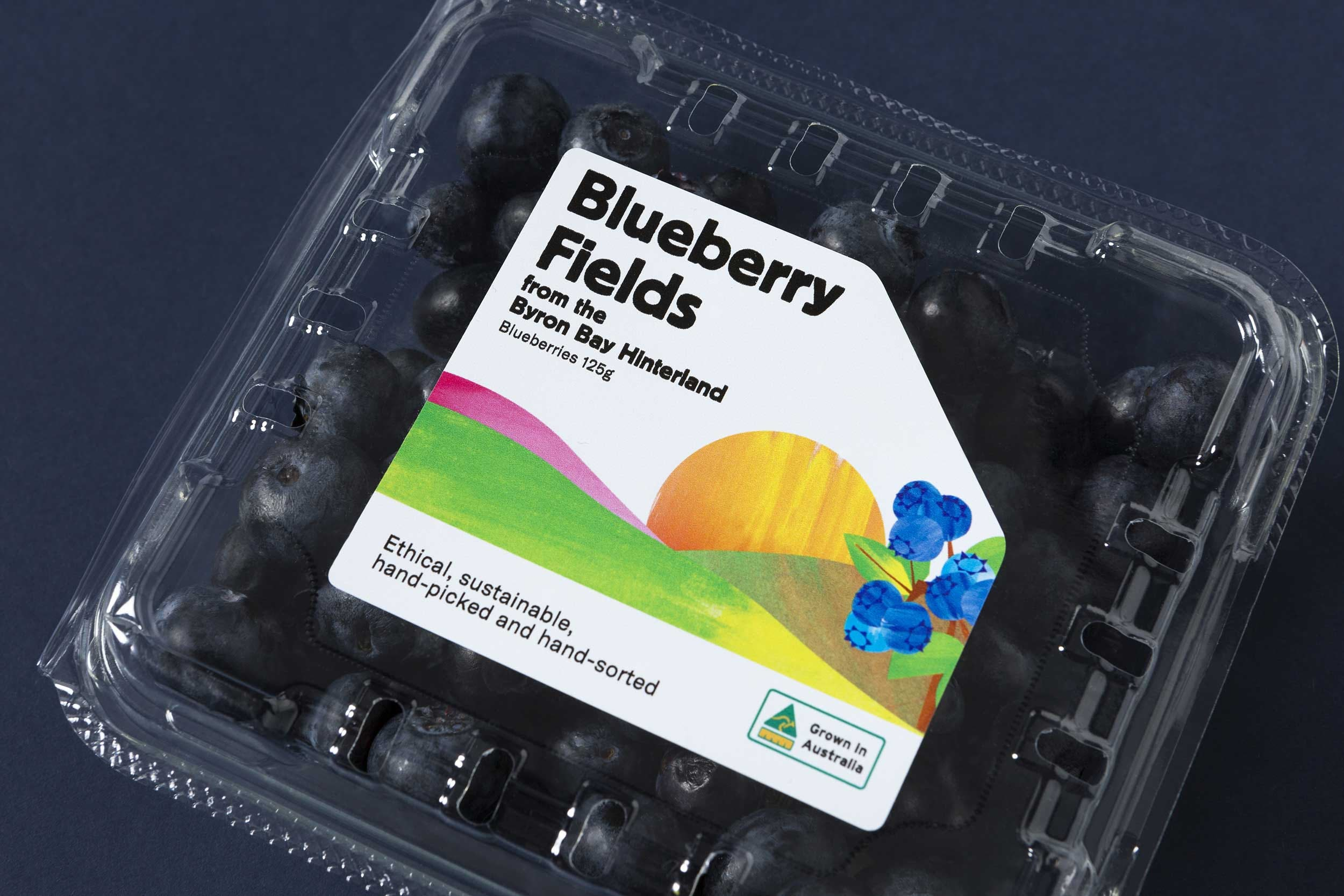 Product shot of Blueberry Field punnet