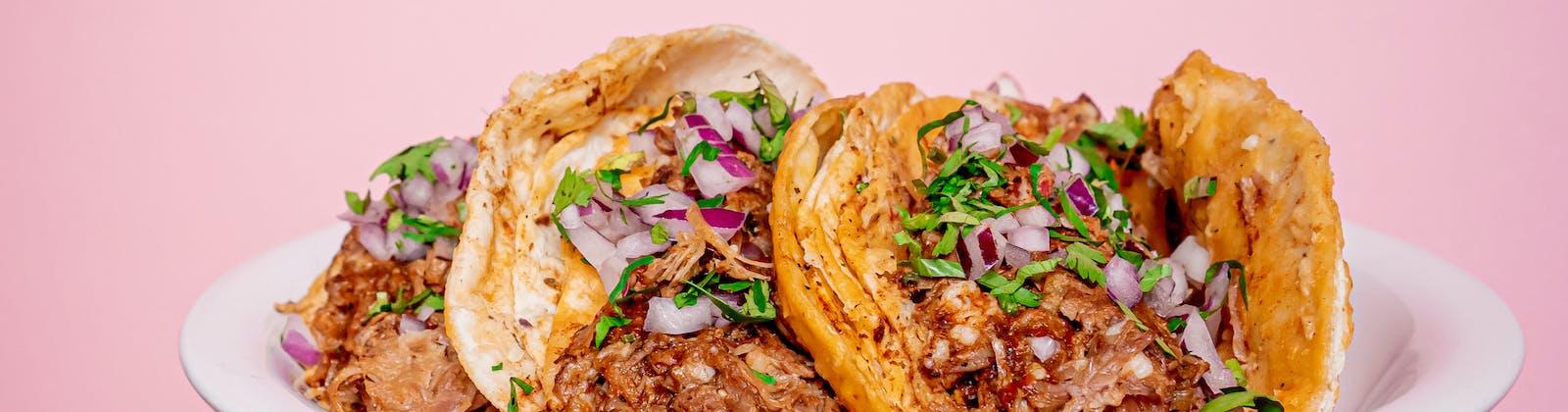 birria tacos in auckland