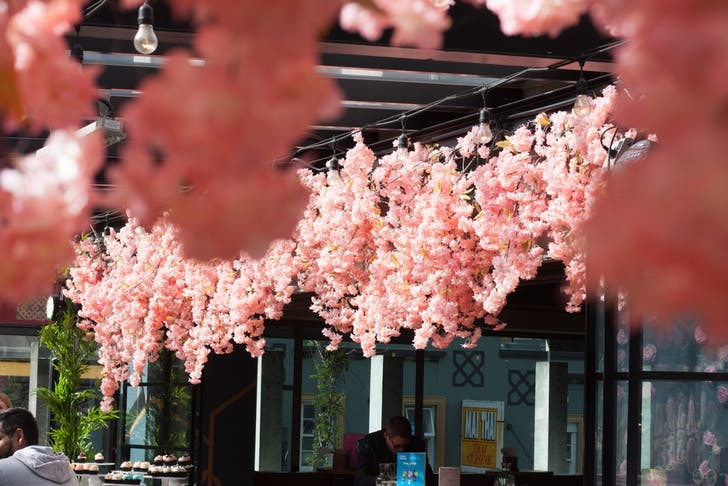The rooftop bar has turned pink to celebrate Cherry Blossom season.