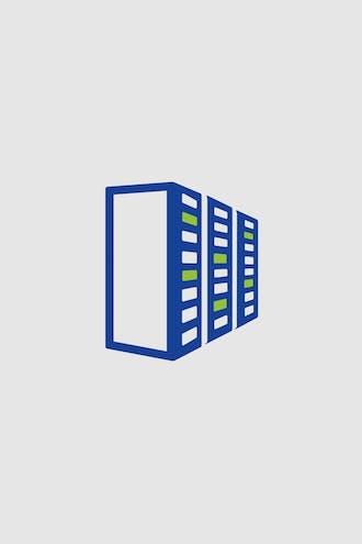 Piktogramm: Drei Serverschränke.
