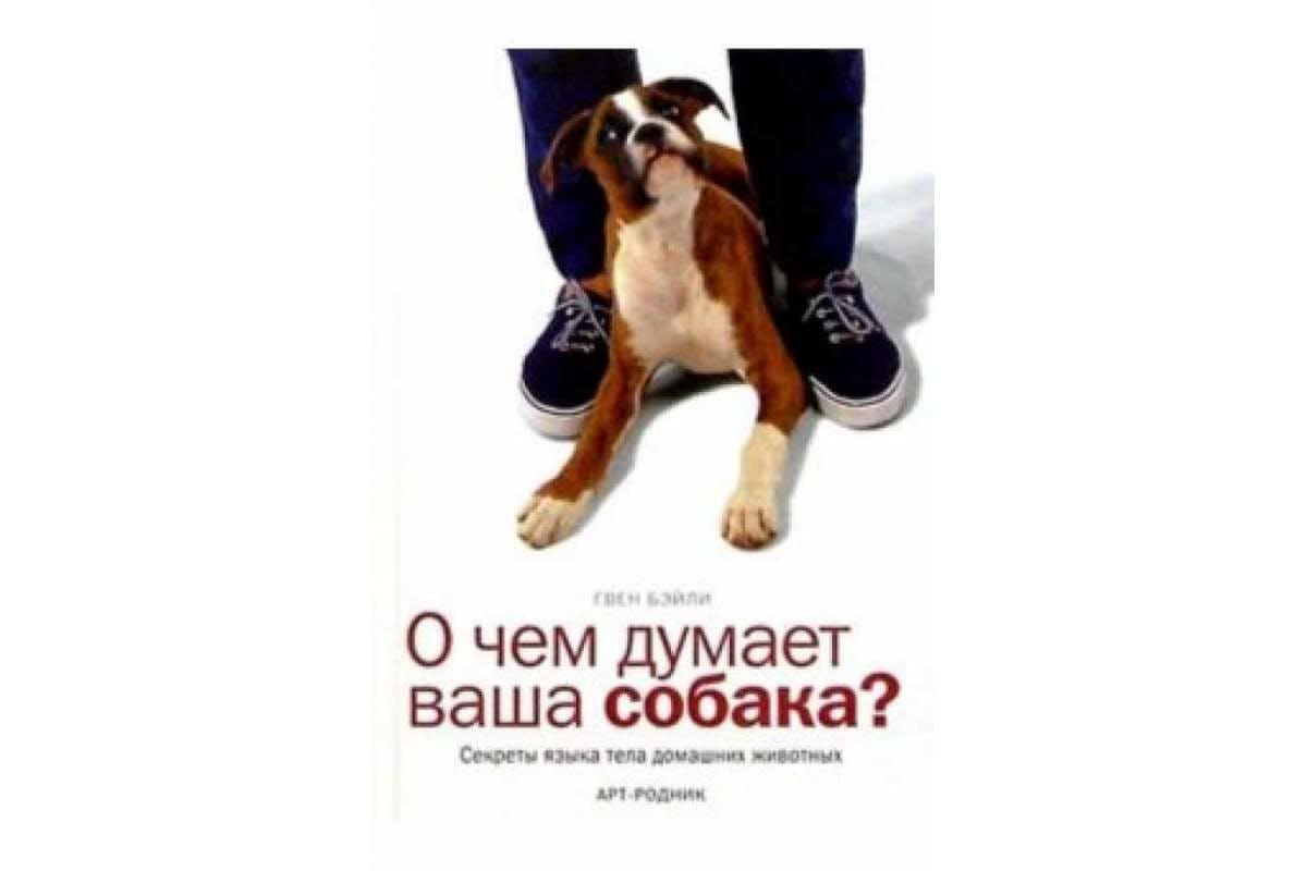 фильм о чем думает ваша собака