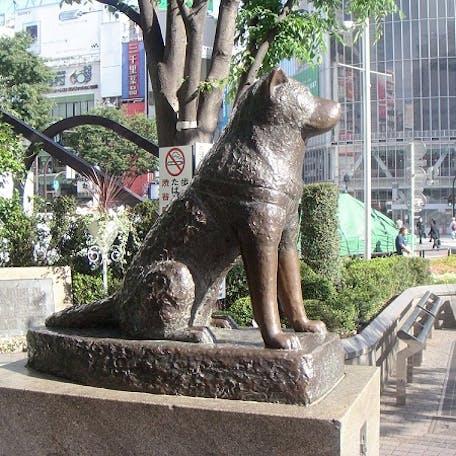 памятник в честь собаки акита-ину Хатико