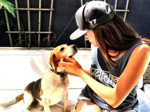 Меган Маркл и ее собака