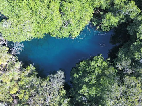 The Cenote Xeh