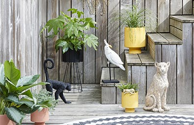 Our favourite indoor and outdoor ideas