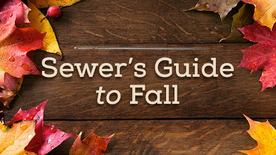 The Sewer's Secret Guide to Fall
