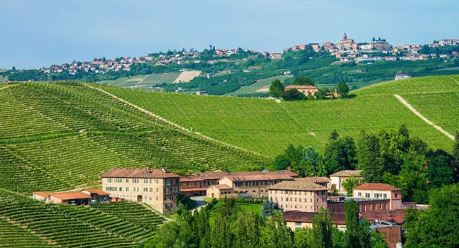 Vino piemontese: Fontanafredda è Cantina Europea dell'anno