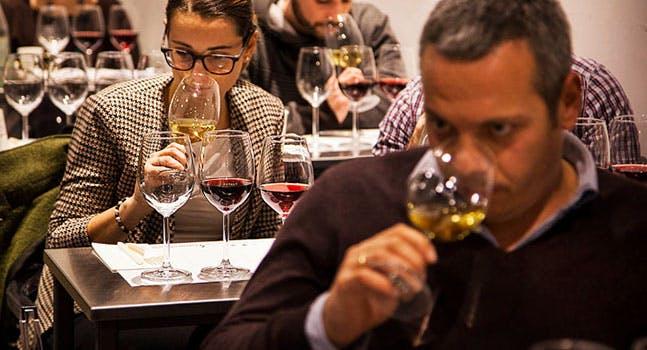 ABC del vino: un'introduzione al mondo del vino