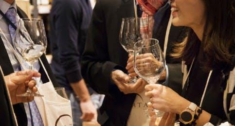 Degustazioni con calici di vino in Enoteca