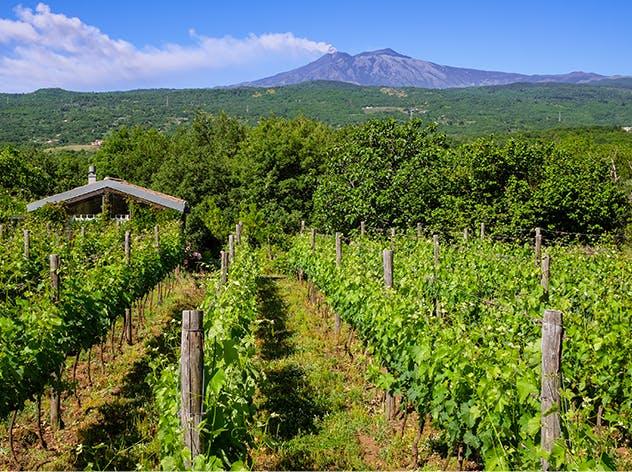 Etna e Sicilia | Eataly