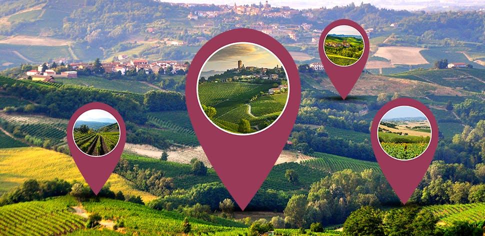 Le terre del vino | Eataly