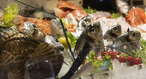 Asta del pesce: Un sabato al mare