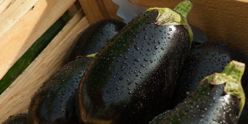 Come tagliare e spurgare le melanzane