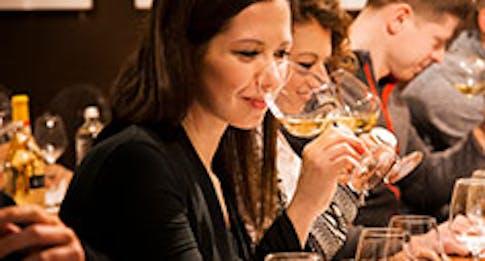 ABC del vino: l'arte di degustare il vino