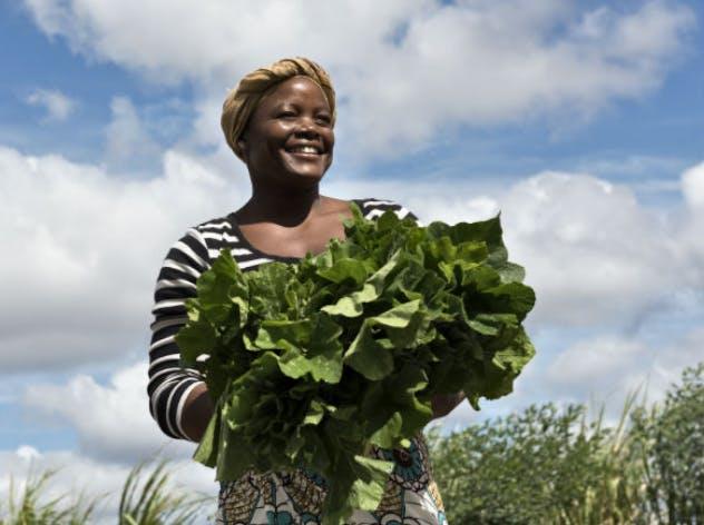 Eataly e il Rispetto - 10.000 orti in Africa