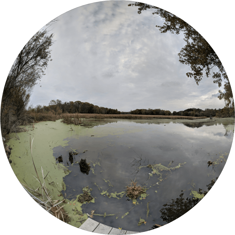 Lincoln Marsh circular photo