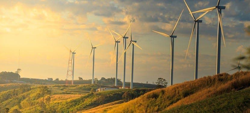 Une rangée d'éoliennes, appréciées des fournisseur d'électricité renouvelable