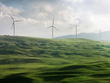 Un plaine verte avec des éoliennes