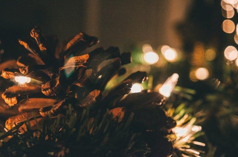 Des guirlandes lumineuses allumées dans un sapin de Noël