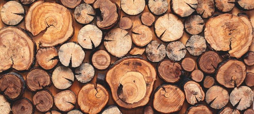 Livraison bois 77 : optez pour un bois de chauffage adapté à vos besoins