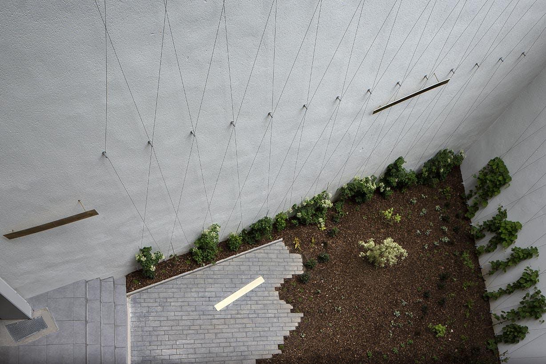 5 rue Erard à Paris 12 : jardin en cœur d'îlot