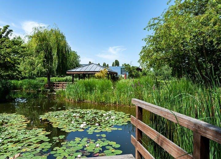 Le parc des Impressionnistes à Rueil-Malmaison