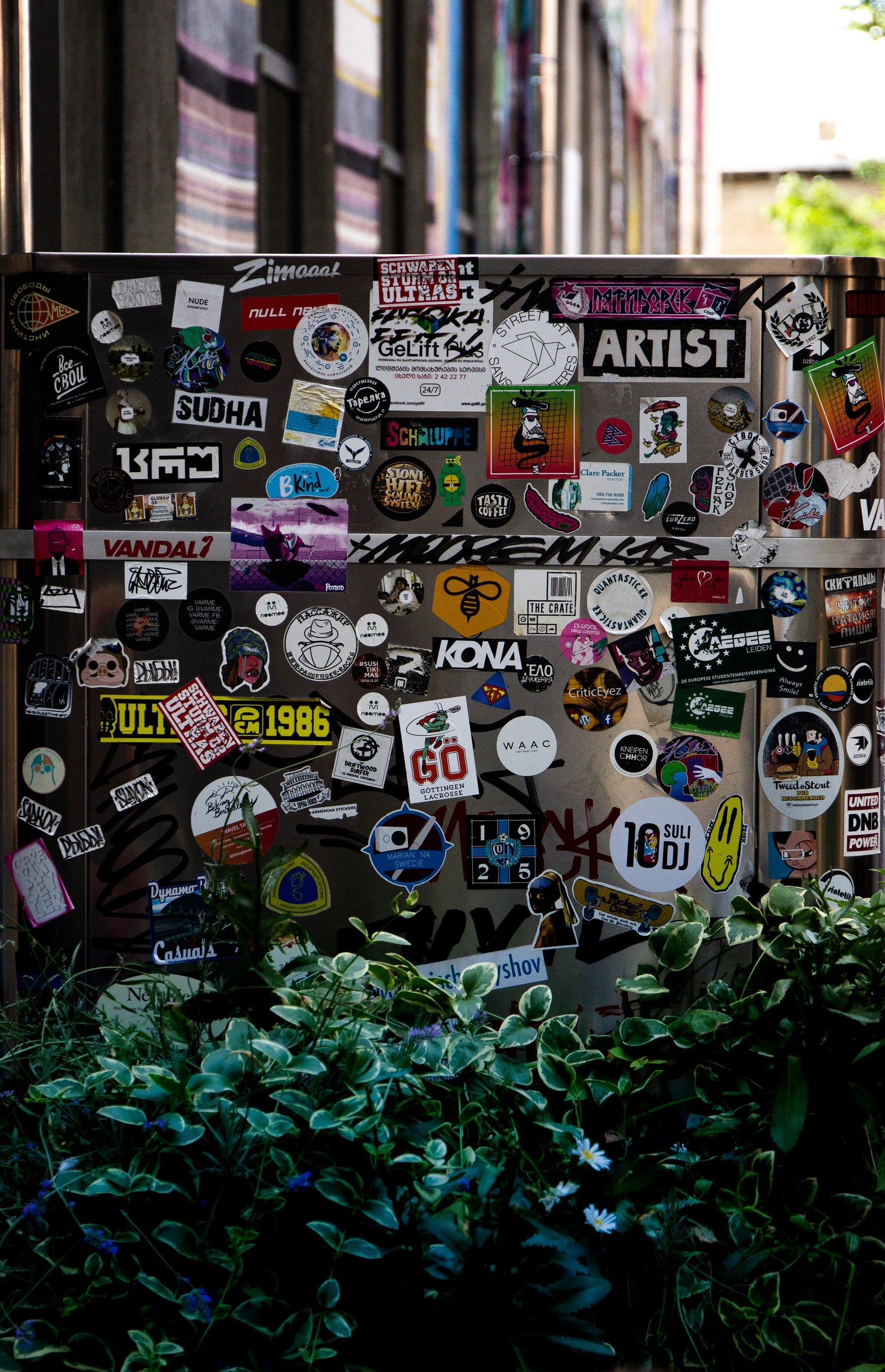 plants with walls covered in stickers