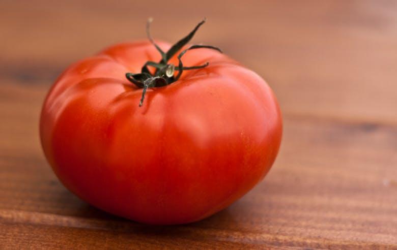 Watts et tomates - Enercoop Nouvelle-Aquitaine - électricité verte