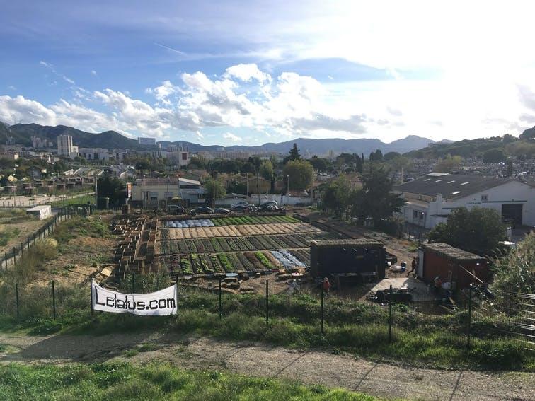 Enercoop Paca - Professionnels - Le Talus Marseille 13 - Paysage Terrain