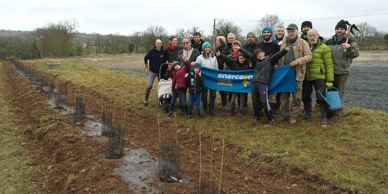 Chantier participatif de plantation d'une haie par les sociétaires d'Enercoop Midi-Pyrénées, sur le futur parc solaire de Montfaucon