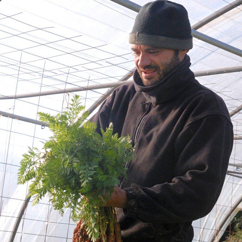 Client - Enercoop - Professionnel - LA ferme du Champ Gallo - Bretagne