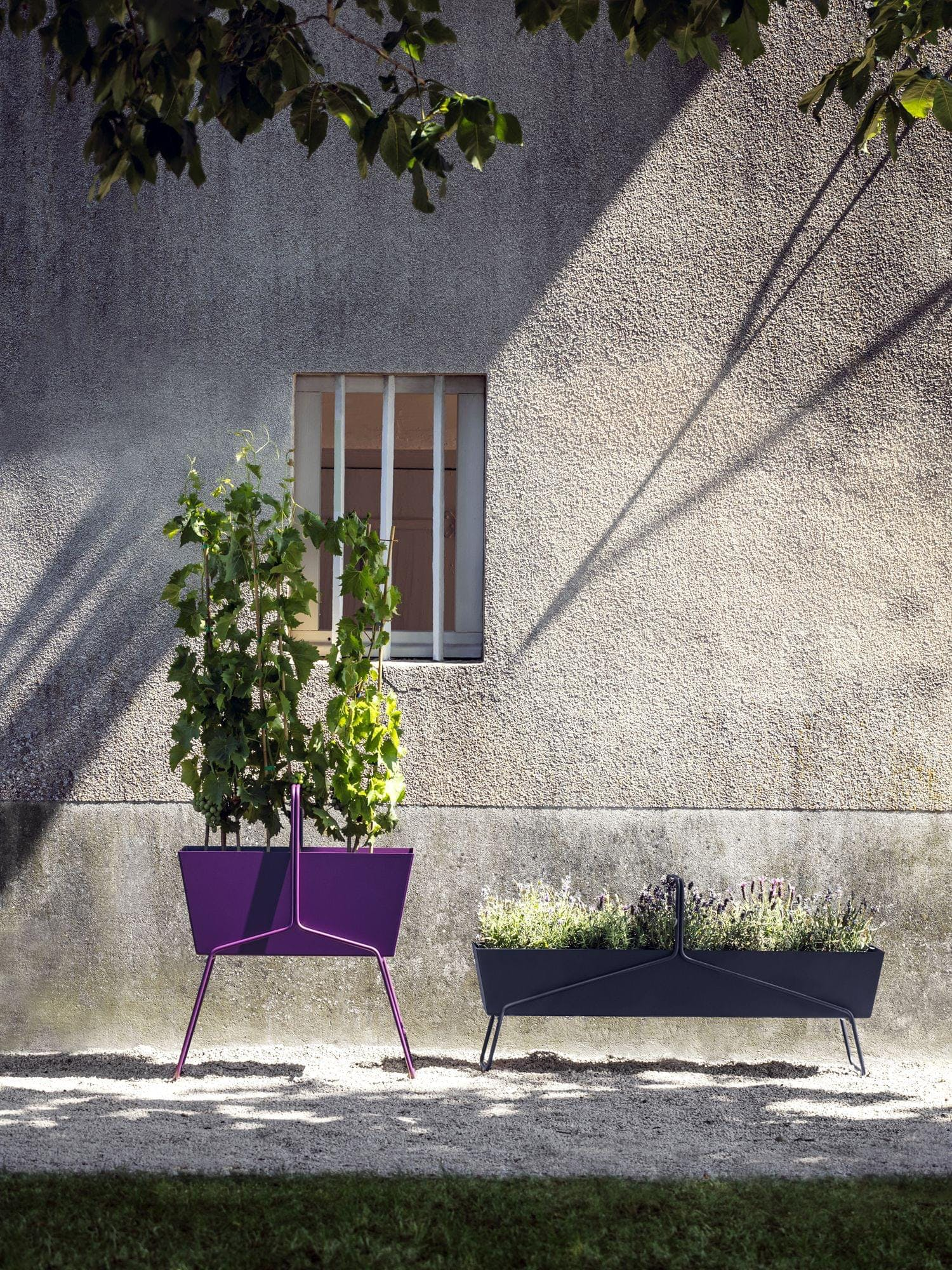 Jardinières Basket num 4