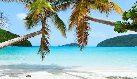 Vit strand, palmer och turkosblått hav.