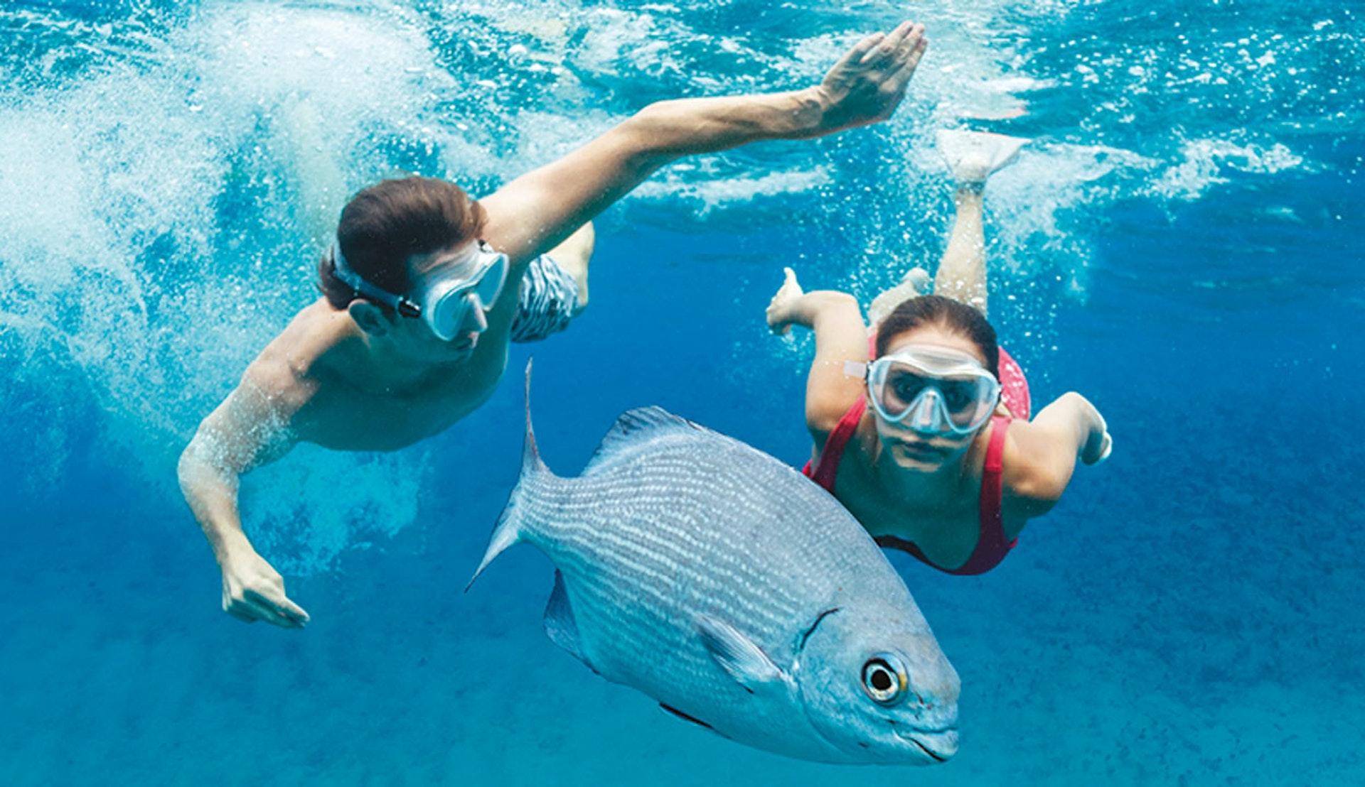Under vatten bland fiskarna.
