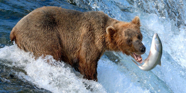 Fascineras av de avlägsna platserna i USA:s nordligaste stat - Alaska.