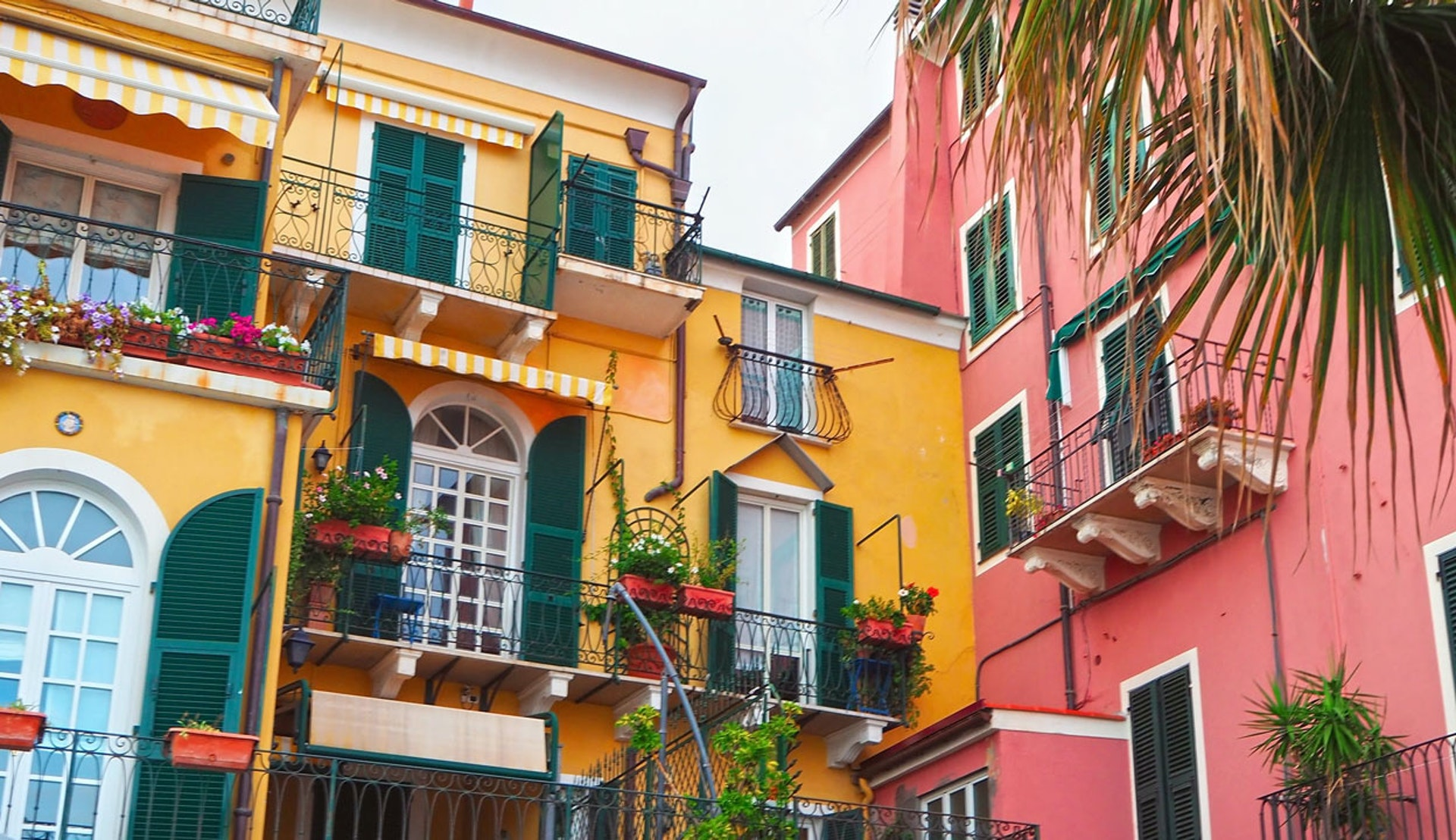Färgglada husfasader i Savona i Italien.