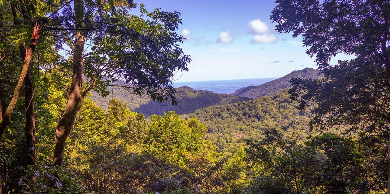 Vy över Morne Trois Pitons National Park på Dominica.