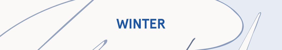 Image of skinny patterned background with the word winter in the center as a header