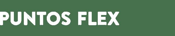 Puntos Flex