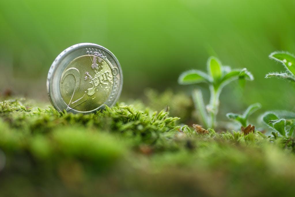 Reaching Net Zero with Sovereign Green Bonds