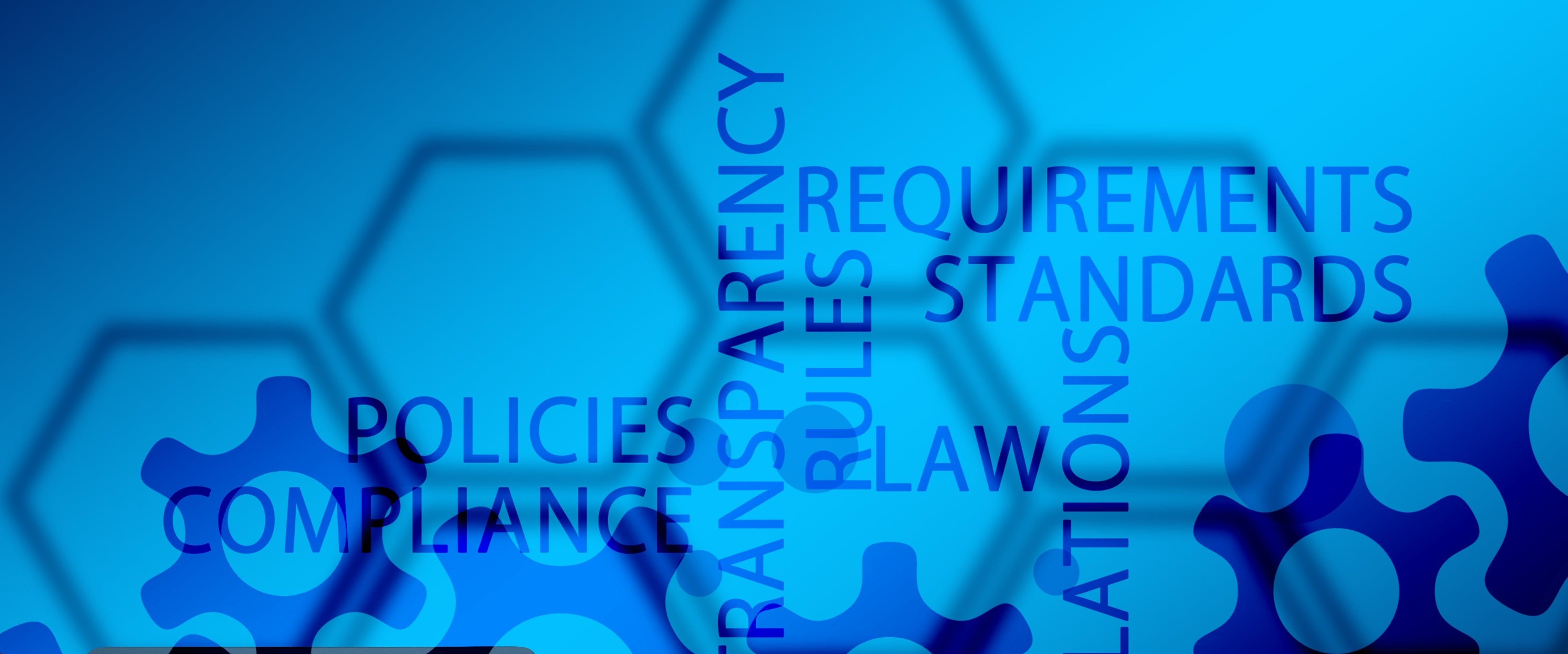 ESG Standards: For international cooperation and European sovereignty