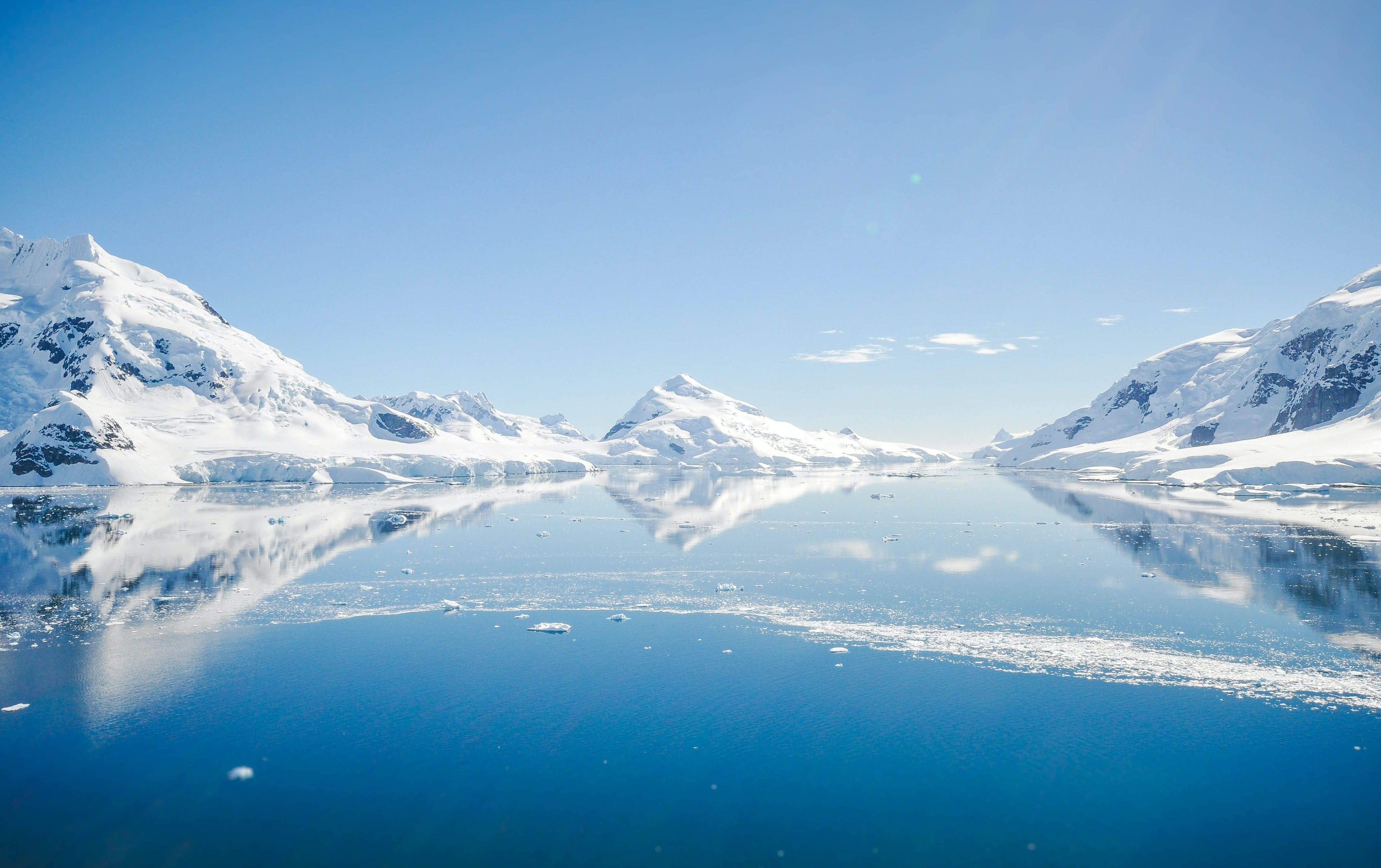 Celebrating international support for Marine Protected Areas Around the Antarctic
