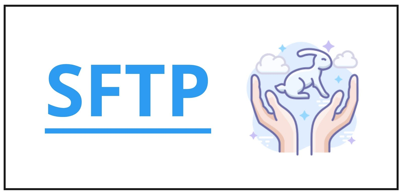 SFTP with image of hands and bunny.